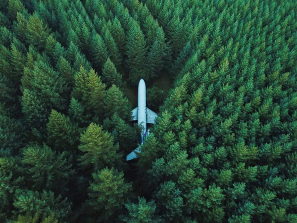 Free Surreal Backgrounds for Designers: Airplane in Forest