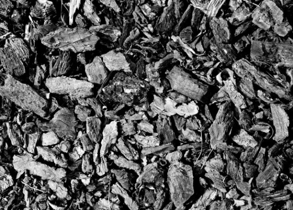 Industrial Textures for your Collection: Coal Pieces