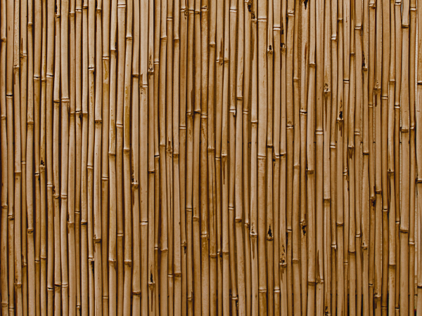Industrial Textures for your Collection: Bamboo Wall
